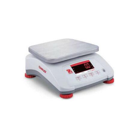Поверка весов технических V41XWE1501T